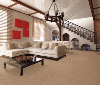 Frieze Carpet Harrisonburg Va